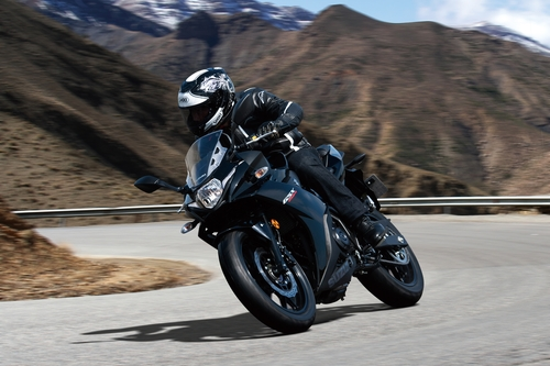 Suzuki GSX250R. Potenza e prezzo (3)