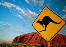 Australia, le Volvo autonome non riescono a schivare i canguri