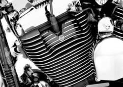 COPERTURA CANDELE/CILIN HARLEY DAVIDSON PN44296-04 Harley-Davidson
