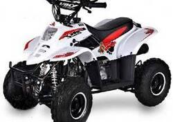 Altre moto o tipologie Minimoto nuova