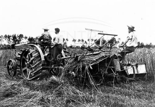 100 anni fa nasceva Fiat 702, il primo trattore Fiat (2)