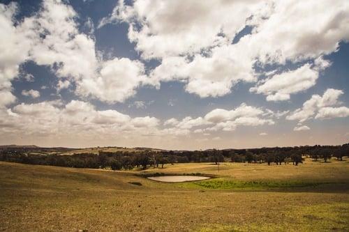 Hyundai Australian EXP 2. Country Side. Trip & Test (6)