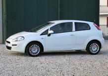 Fiat Punto 1.3 MJT 75CV 3 porte Van Easy 4 posti E5+ del 2015 usata a Vicenza