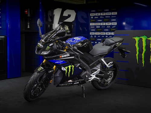Yamaha YZF-R125 Monster Energy 2019: MotoGP replica (2)