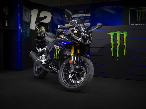 Yamaha YZF-R125 Monster Energy 2019: MotoGP replica (6)