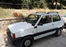 Fiat Panda 1100 i.e. cat College del 2002 usata a Collevecchio