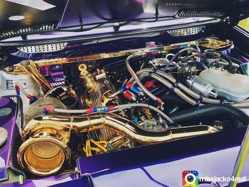 Motori placcati in oro: follie del tuning (9)