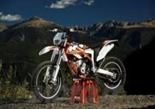 KTM Freeride 350, a 7.250€ dai concessionari. A loro la parola