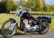 Harley Davidson: torna la Softail Standard