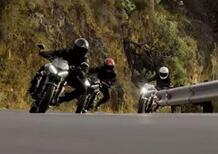 Triumph Street Triple S, R e RS. Gruppo di famiglia in un esterno (Video)