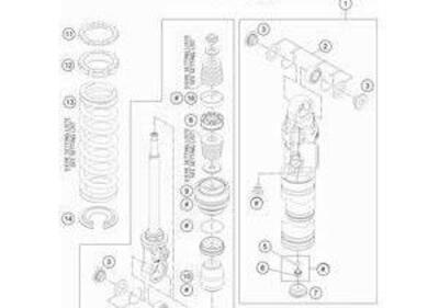 MOLLA MONO KTM 40N/Mm - 210Mm CODICE : 93010208S - Annuncio 8029194