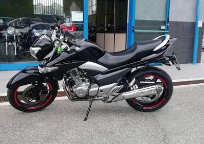 Suzuki Inazuma 250 (2012 - 17) - Annuncio 8072517