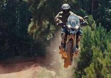 Ricky Carmichael guida la nuova Triumph Tiger 1200 [VIDEO]