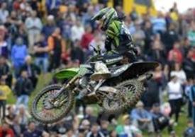 Alex Lupino
