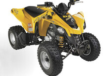 Can-Am Brp DS 250 BD