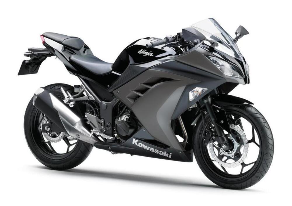 Kawasaki Ninja 300 (2012 - 14)