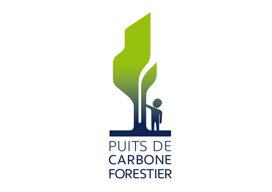 Peugeot-ONF: in Amazzonia un Pozzo di carbonio forestale